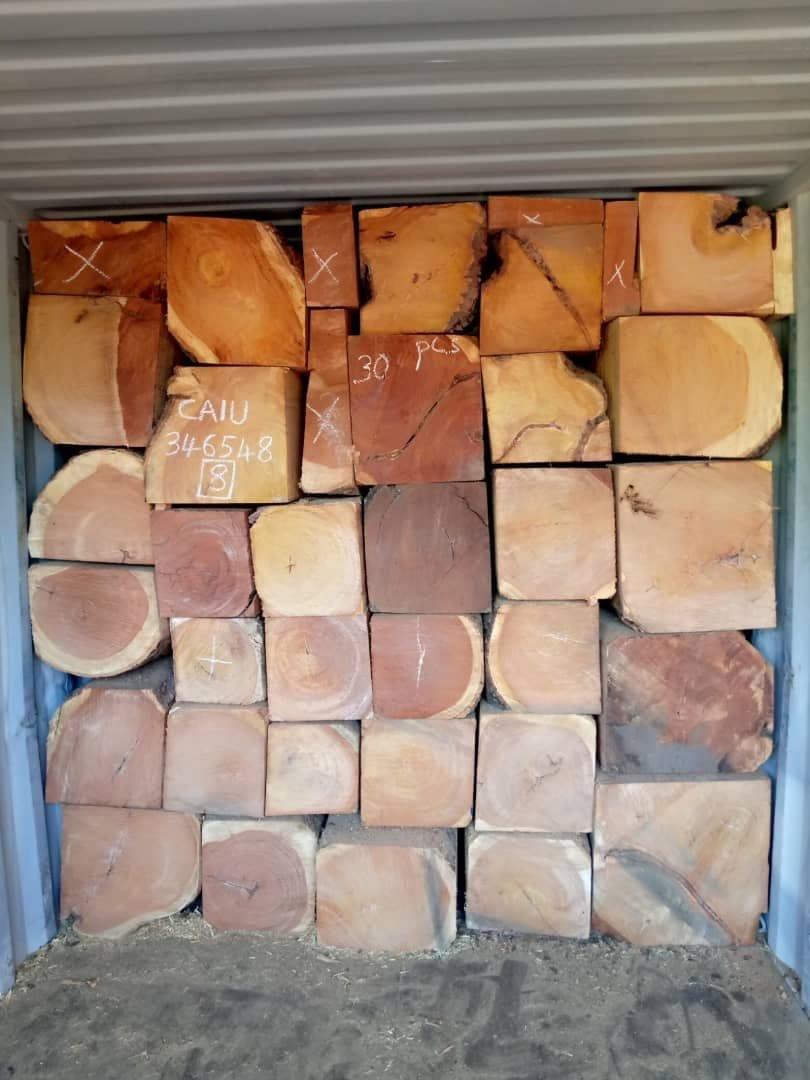 Thủ tục nhập khẩu gỗ xẻ, gỗ tròn